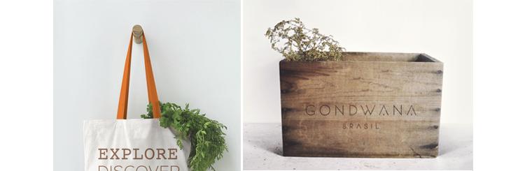 Gondwana New Identity 2016