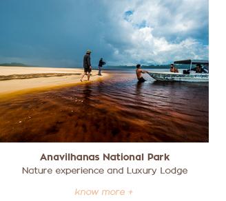 Amazon Trip Anavilhanas Luxury Gondwana Brasil