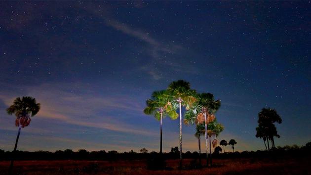 Brazil Gondwana Chapada Veadeiros Trip