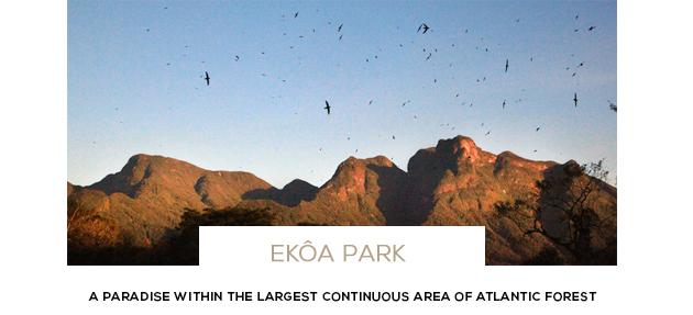 Ekoa Park Parana Brazil Gondwana